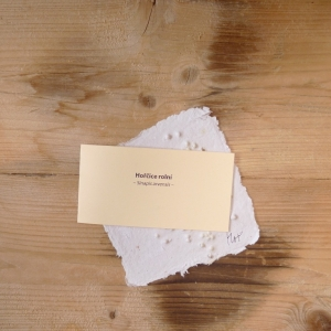 Ruční papír malý se semínky hořčice rolní