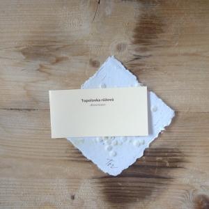 Ruční papír malý se semínky topolovky růžové